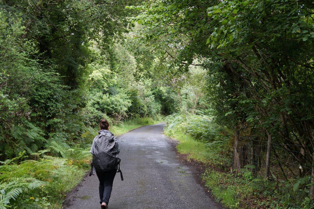 Camminando lungo la Western Way, irlanda