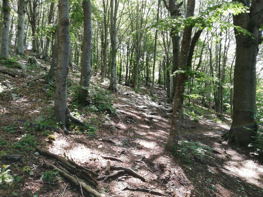 Sentiero per il Monte Ocone