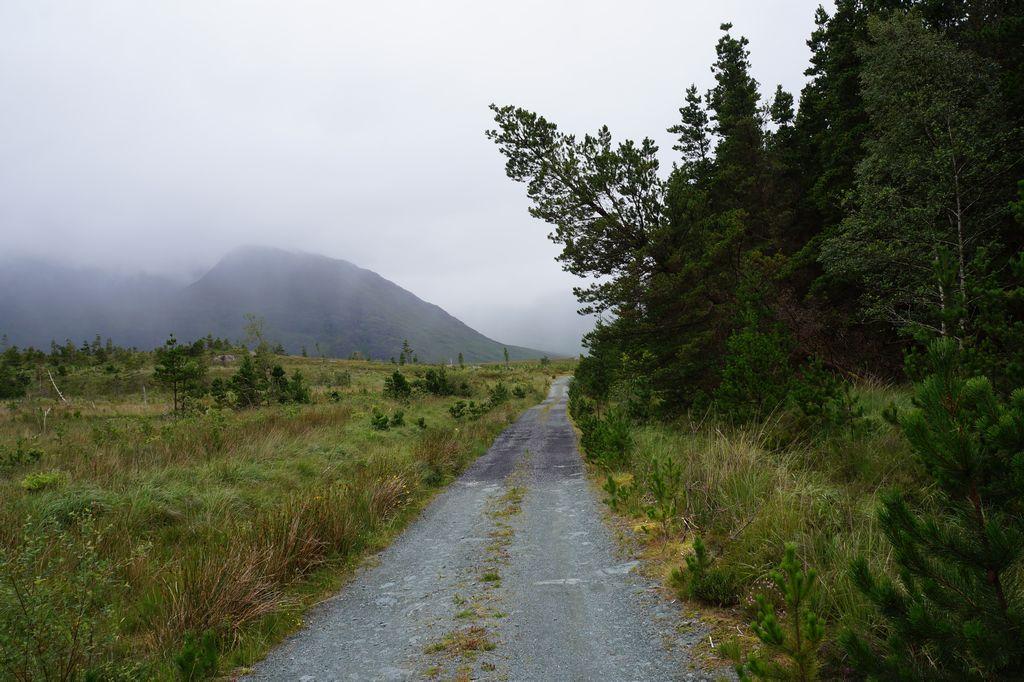 Cammino in Irlanda